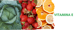 tudo sobre a vitamina E, usos, efeitos colateriais consumo diário e fontes